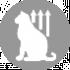 CLUB 4 PAWS ПРЕМІУМ ДЛЯ КОШЕНЯТ «КУРКА». ПОВНОРАЦІОННИЙ СУХИЙ КОРМ.